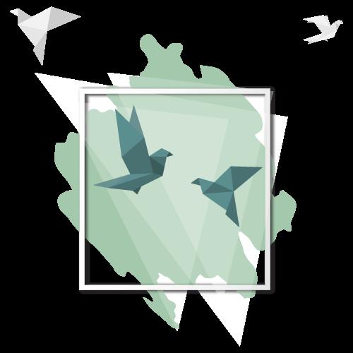 birdsframev2